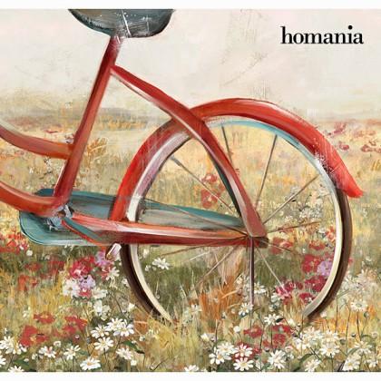 Tablou bicicletă roșie by Homania