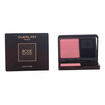Guerlain - ROSE AUX JOUES duo de blush 01-morning rose 6,5 gr